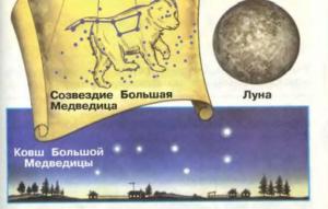 Стр 33 номер 7 учебник Окружающий мир 1 класс 2 часть