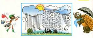 Стр 36 номер 3 учебник Окружающий мир 1 класс 2 часть
