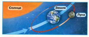 Стр 34 номер 2 учебник Окружающий мир 1 класс 2 часть