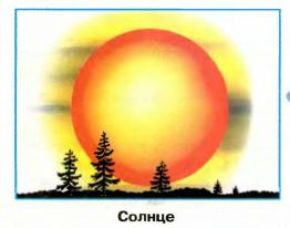 Стр 19 номер 8 учебник Окружающий мир 1 класс 1 часть