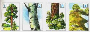 Стр 77 номер 6 учебник Окружающий мир 2 класс 2 часть