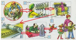 Стр 111 номер 10 учебник Окружающий мир 2 класс 1 часть