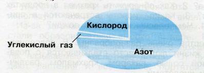 Стр 46 номер 2 учебник Окружающий мир 3 класс 1 часть