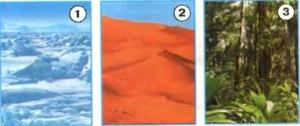 Стр 25 номер 3 учебник Окружающий мир 1 класс 1 часть