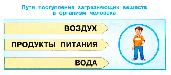 Стр 20 номер 1a рабочая тетрадь Окружающий мир 3 класс 2 часть