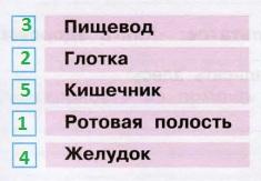 Стр 79 рабочая тетрадь Окружающий мир 3 класс 2 часть Плешаков ответы номер 4